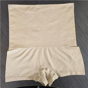 Grote taille Shaper shorts met hoge taille