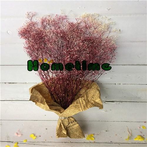 Сохранилось Цветы-Япония Babysbreath
