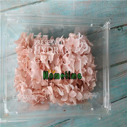 Senior Preserved Flowers-Preserved Hydrangea Box