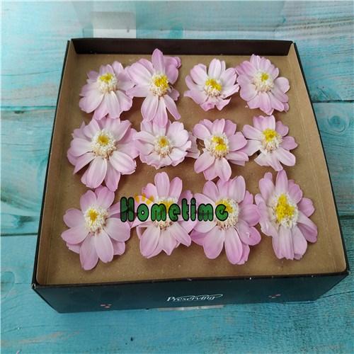 Senior Preserved Flowers-Preserved Daisy Box