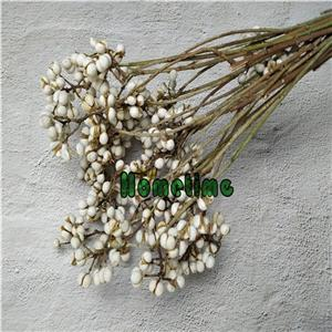 Dried Flowers-White Berry