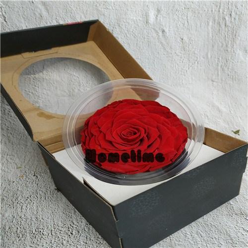 купить Коробка с консервированными розами,Коробка с консервированными розами цена,Коробка с консервированными розами бренды,Коробка с консервированными розами производитель;Коробка с консервированными розами Цитаты;Коробка с консервированными розами компания