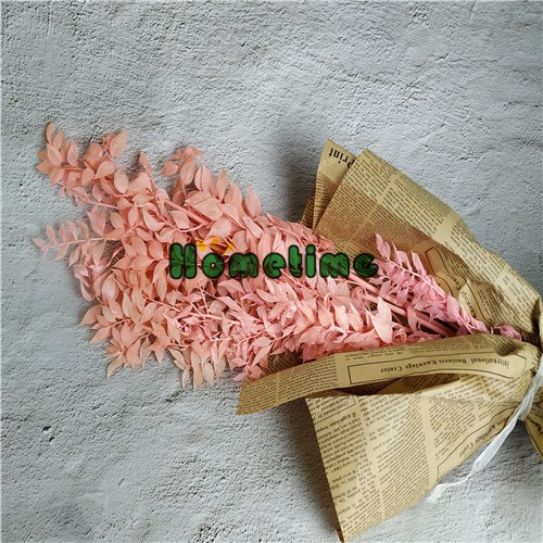 Sales Preserved Flower dried leaf Ruscus, Buy Preserved Flower dried leaf Ruscus, Preserved Flower dried leaf Ruscus Factory, Preserved Flower dried leaf Ruscus Brands