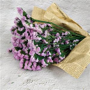Preserved Flower-Remember Me