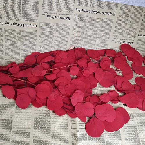 Консервированная цветочная композиция - яблочный лист Multi Color
