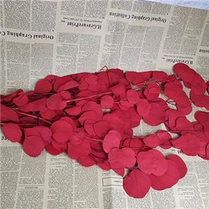Preserved Floral Arrangment-Apple leaf Multi Color