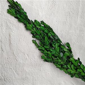 Preserved Floral ArrangmentMillet Leaf