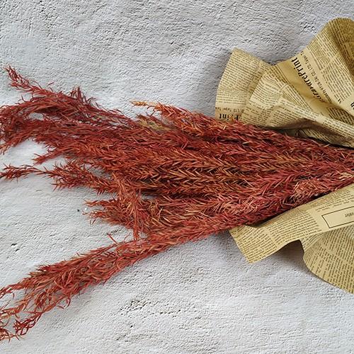 Сохранилось Цветочные Arrangment-Melaleuca Bracteata
