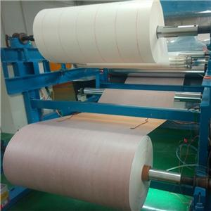 Nomex Paper 6650electric Motor Winding Insulating Paper