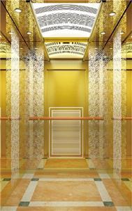 MR And MRL Type Residential Passenger Elevator