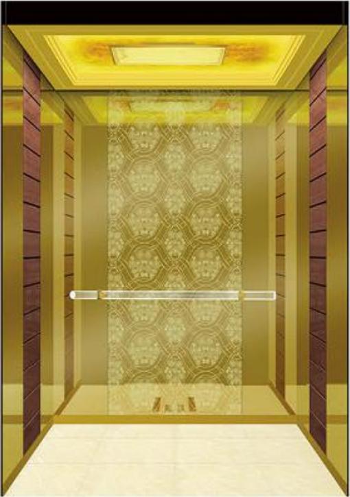 luxury residential elevator