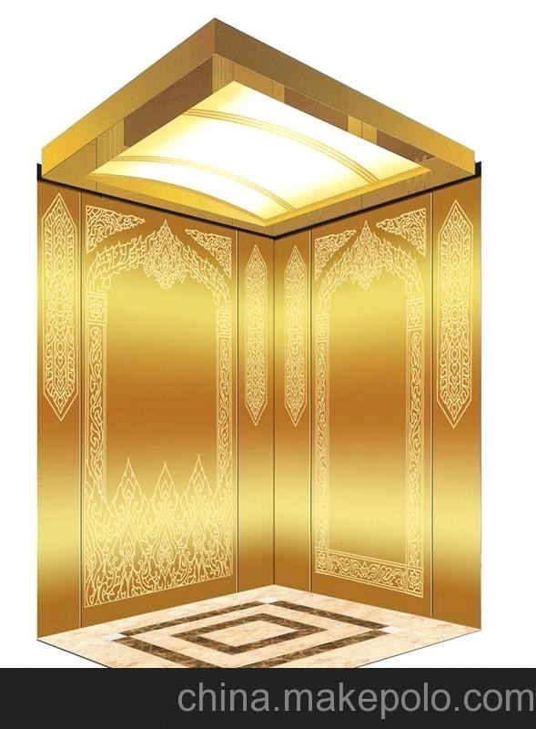 VVVF Drive Small Home Elevator Lift