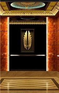 Passenger Lift Electrical Residential Elevators