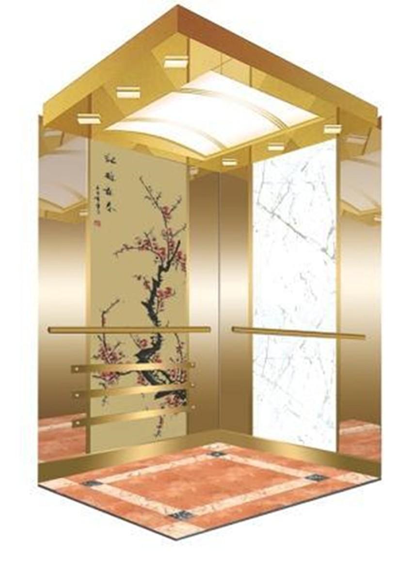 Small Load 320kf 450kg Villa Home Lift Fashion Design