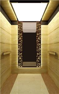Elevator Residenciales Home Passenger Lift