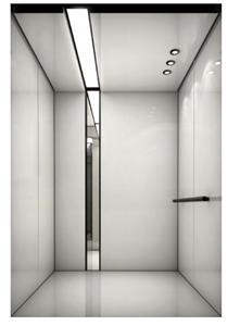 CE ISO 320kg VVVF Residential Elevator Small Home