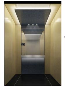 3-5 Person Home Lift Villa Elevator Hand Door