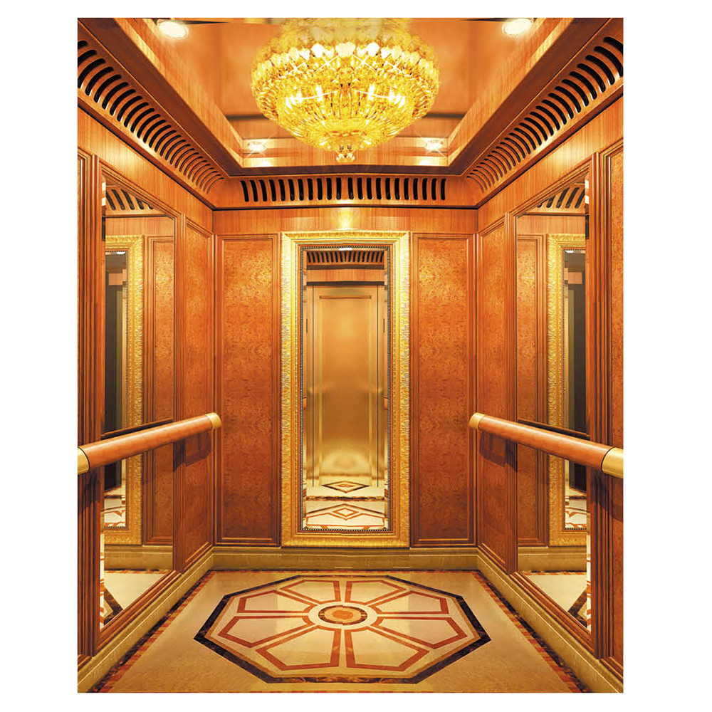 Residential luxury home elevator with small size