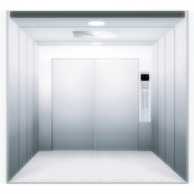 cargo-elevators-0.5ms-for-factory-warehouse-freight-elevator
