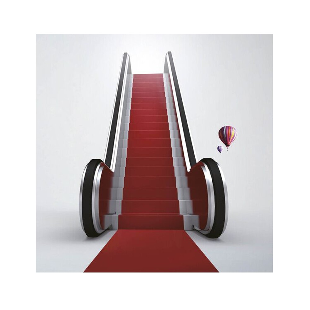 FUJIZY vvvf escalator price residential home escalator with handrail uv sterilizer