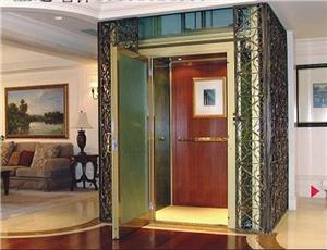 Chinese FUJIZY 320kg Mini Home Elevator with MRL