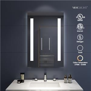 LED vanity mirror with lights