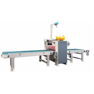 Acrylic Sheet Making Machine