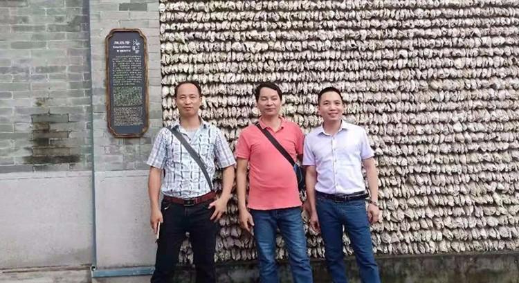 베트남 Woodsland Honeycomb Pressing Machine Line