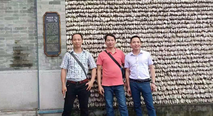 Vietnam Woodsland Honeycomb Pressing Machine Line
