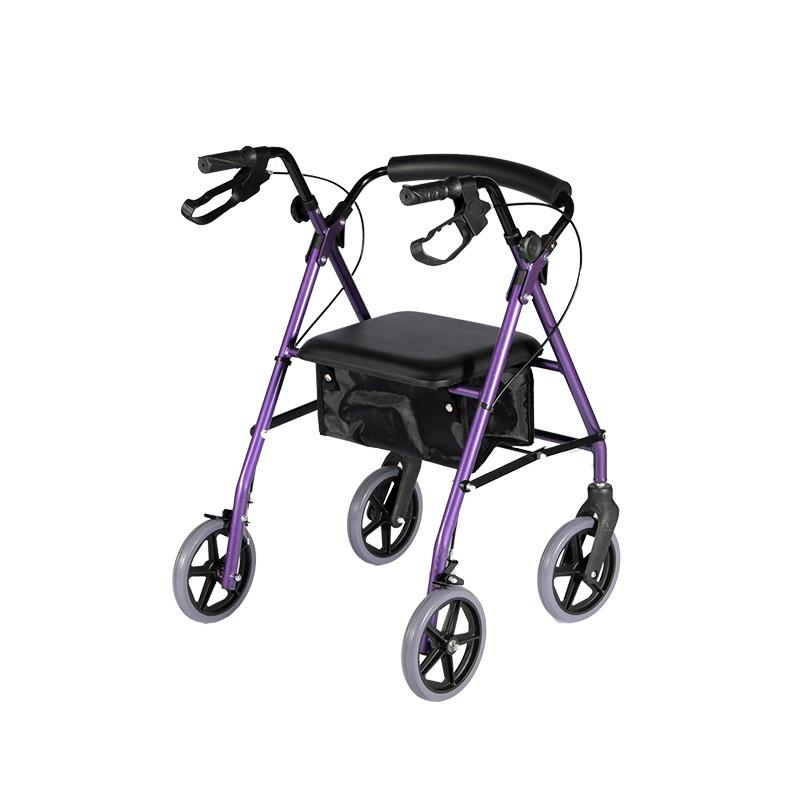 Disabled Lightweight Walker
