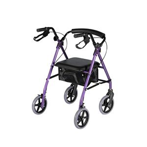 Disabled Lightweight Walker