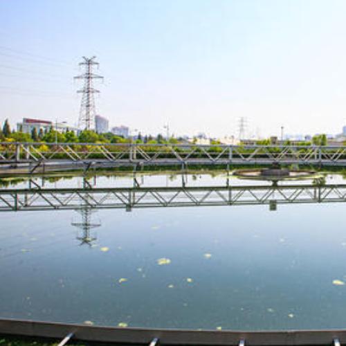Bei Prozesswasser haben die Entfernung von Algen und die Bakteriostase große Industrieunternehmen immer beunruhigt.