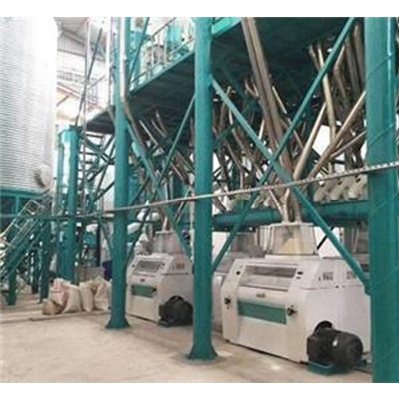 Corn Maize Grits Mill Wheat Flour Processing Line