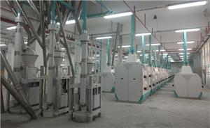 600TPD FLOUR PRODUCTION LINE