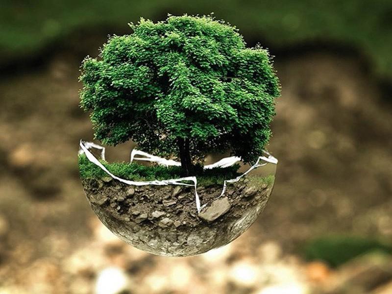 Стратегия устойчивого развития