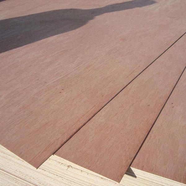 18mm-bintangor-plywood-sheet-prices (1).jpg