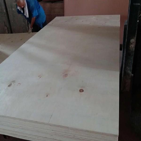 Kaufen Naturfurnier Pappelsperrholz;Naturfurnier Pappelsperrholz Preis;Naturfurnier Pappelsperrholz Marken;Naturfurnier Pappelsperrholz Hersteller;Naturfurnier Pappelsperrholz Zitat;Naturfurnier Pappelsperrholz Unternehmen