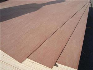 New product bintangor plywood