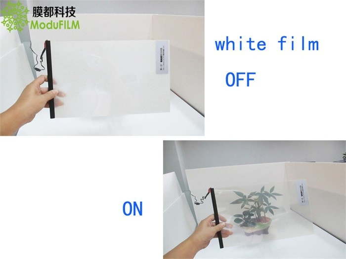 Self Adhesive Switchable Smart Film