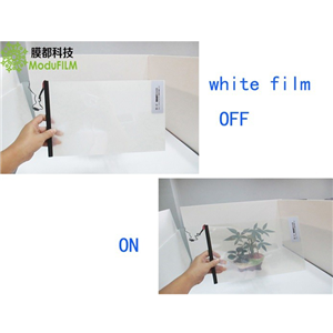 Self Adhesive Switchable Smart Film