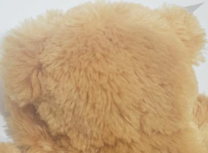 Hide And Seek Plush Bear