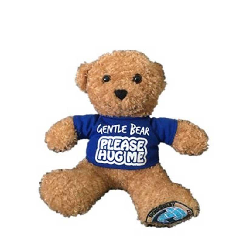 Plush Teddy Bear Gift
