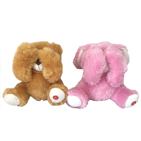 Hide And Seek Plush Bear Toy