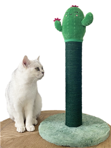 New Adorable Sisal Scratching Post with Cactus