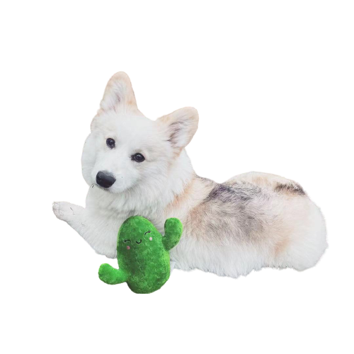 Adorable Cactus Toy with squeakers for Pet