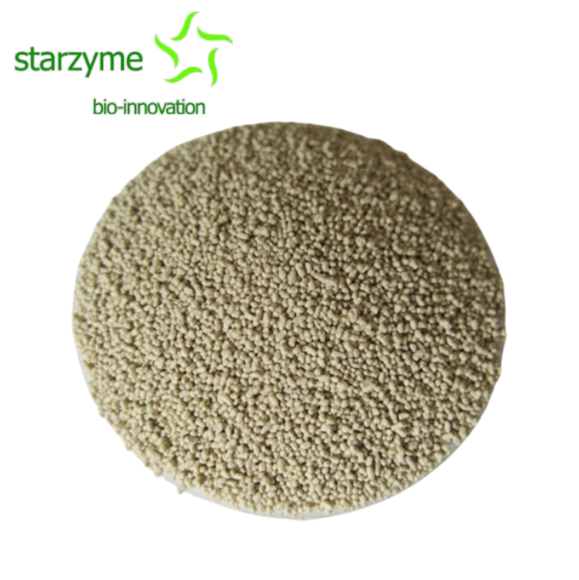 Enzyme For Laying Chickens Manufacturers, Enzyme For Laying Chickens Factory, Supply Enzyme For Laying Chickens