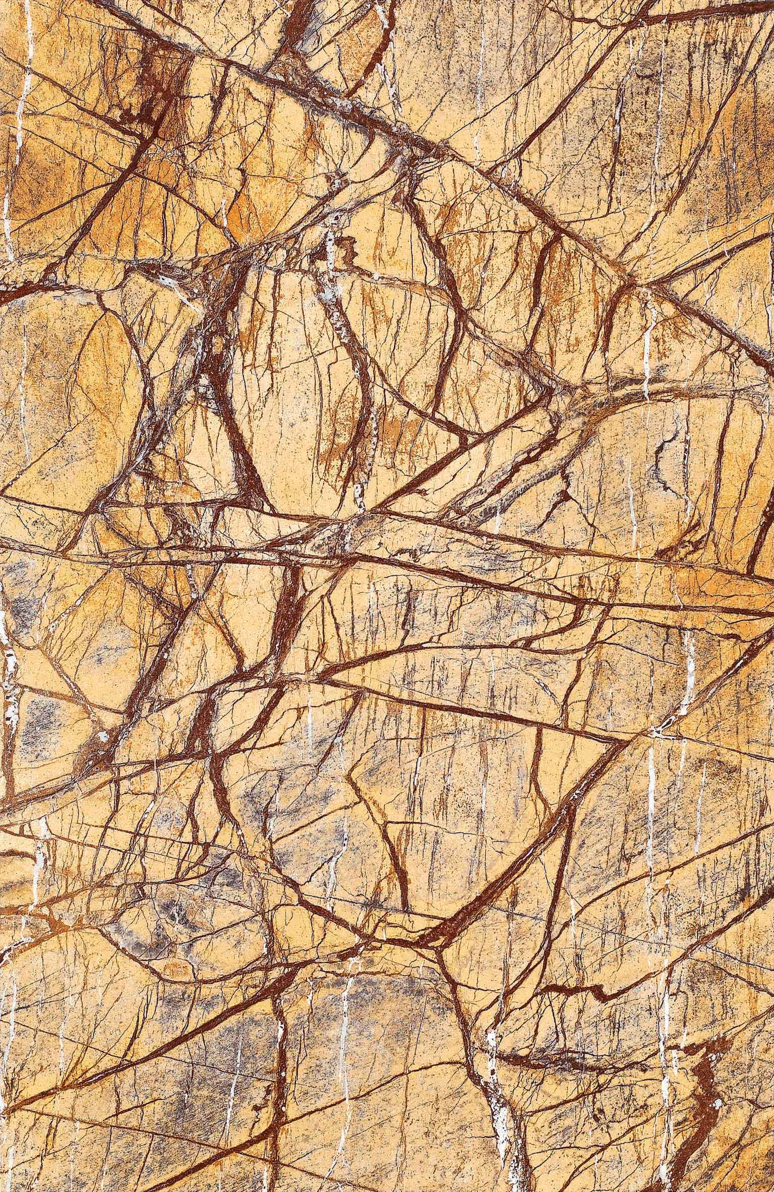 Assinis Fantasia brown marble tiles