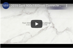 2019 Gani 900x1800mm Connected Veins