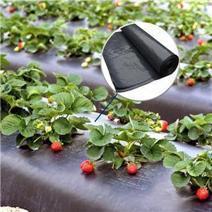 Película agrícola de 1200 mm