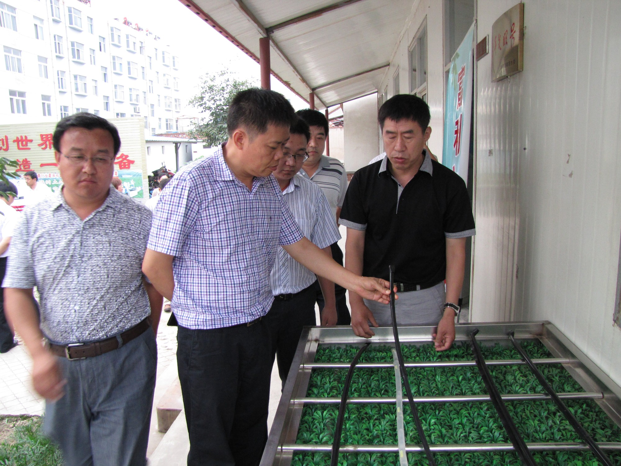 Leaders at all levels come to inspect the company